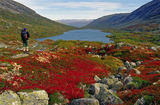 Höstvandra i Norge