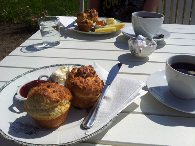 muffins_yvonne640